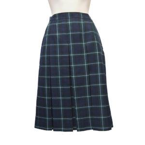Winter Skirt Style 3042