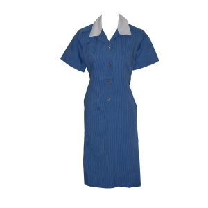 St Aloysius College Dress