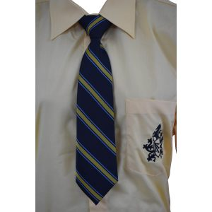 B W-Pale Blue,Gold Stripe Tie