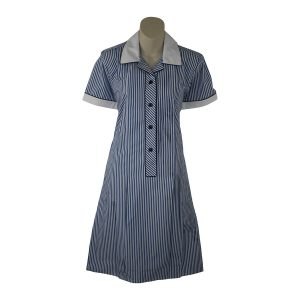 Berwick College Dress Ad