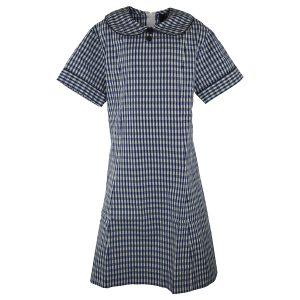 St Francis De Sales Dress